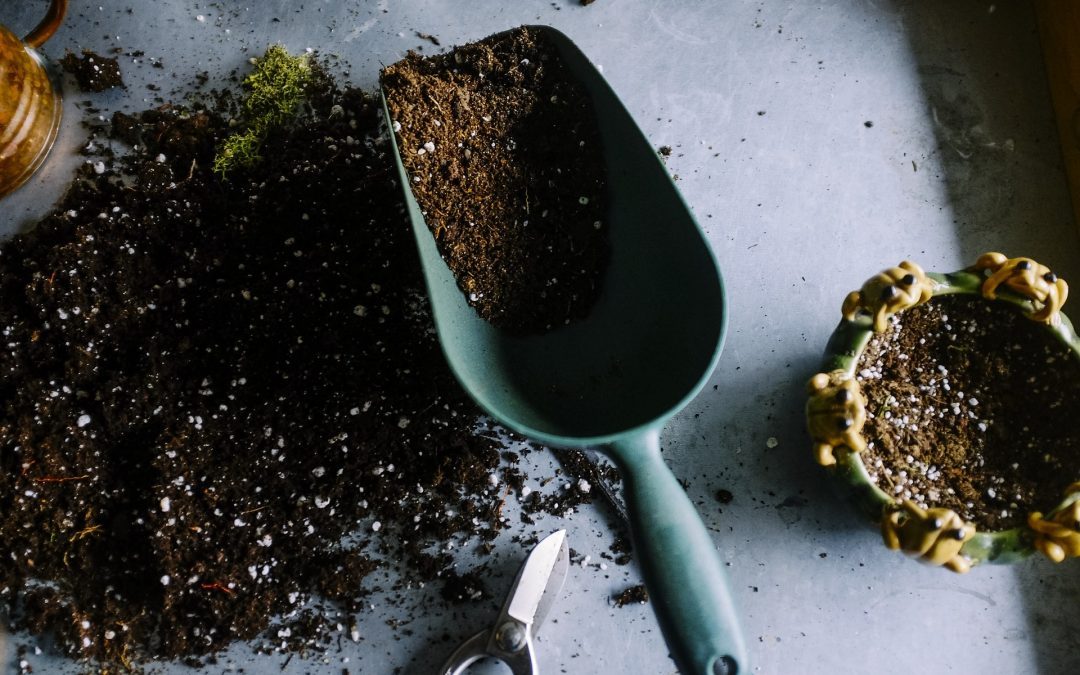 Soil Types & What It Means To Your Garden