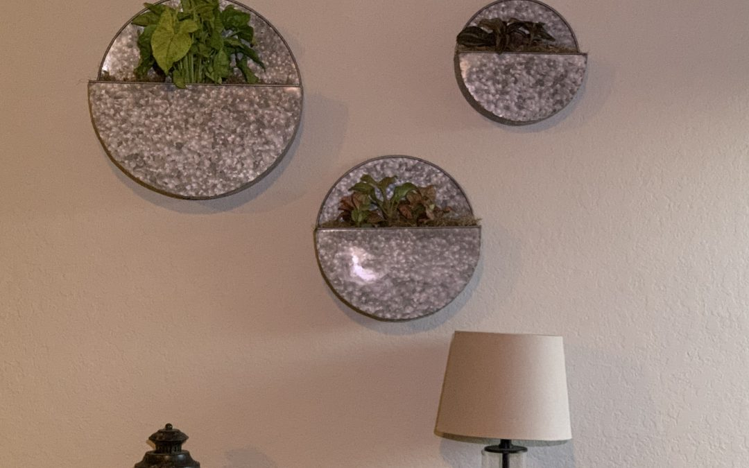 Wall Planters – Adding Live Plants